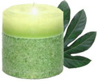 Ashleigh & Burwood - Translucent Pillar Candle - Botanica