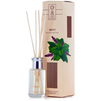 Earth Secrets - Reed Diffuser - Mint